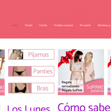Éxito comercial: Ingreso de ropa interior argentina a Panamá por e-commerce