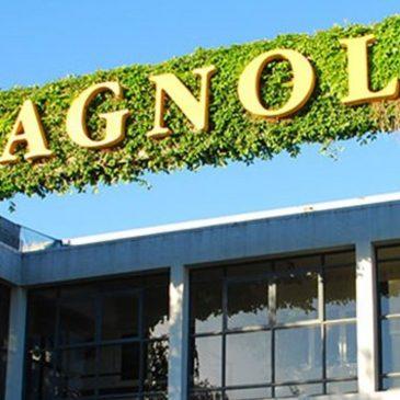 Bienvenido Cagnoli a JC Online Solutions
